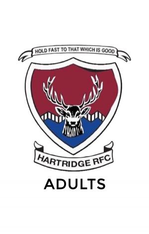 Hartridge RFC Adult Sizes